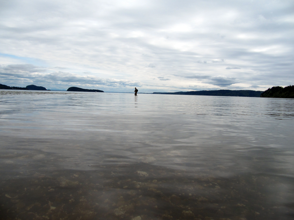 Saltwater fly fishing mini photo gallery dryft fishing for Puget sound fly fishing